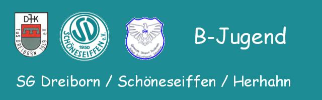 Logo_BJugend_2012