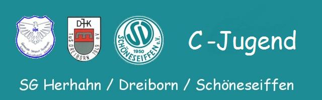 Logo_CJugend_2013