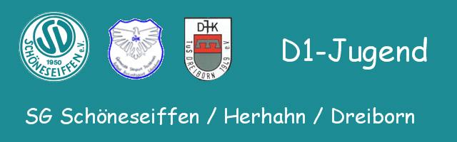 Logo_D1Jugend_2012